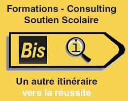 logo BIS.QI