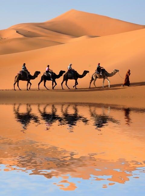 formation langue arabe en voyage